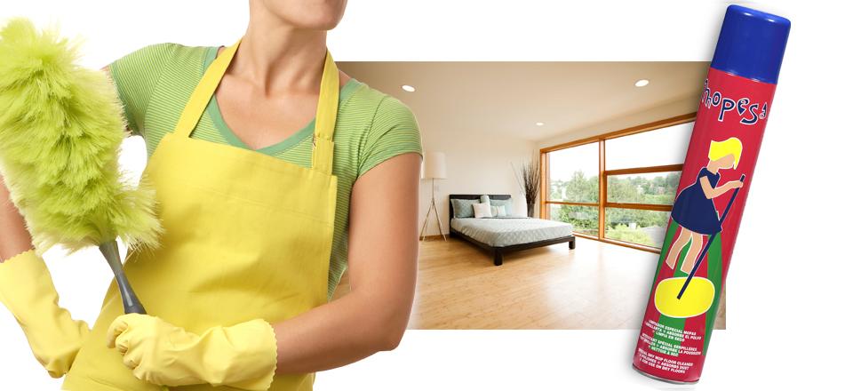 Mopesa limpieza hogar